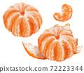 Mikan柑橘類水果圖 72223344