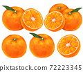Mikan柑橘類水果圖 72223345