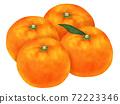 Mikan柑橘類水果圖 72223346