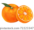 Mikan柑橘類水果圖 72223347