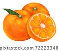 Mikan柑橘類水果圖 72223348