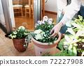 園藝種植 72227908
