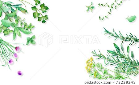 在桌上安置的各種各樣的草本概略的看法。水彩插圖框架背景。有陰影。 72229245