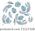 Fir cones, pine tree branch spruces decoration set 72237308