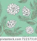 Cones pattern of fir or pine, seamless background 72237310