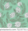 Cones pattern of fir or pine, seamless background 72237311
