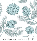 Cones pattern of fir or pine, seamless background 72237316
