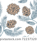 Cones pattern of fir or pine, seamless background 72237320