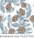 Cones pattern of fir or pine, seamless background 72237322
