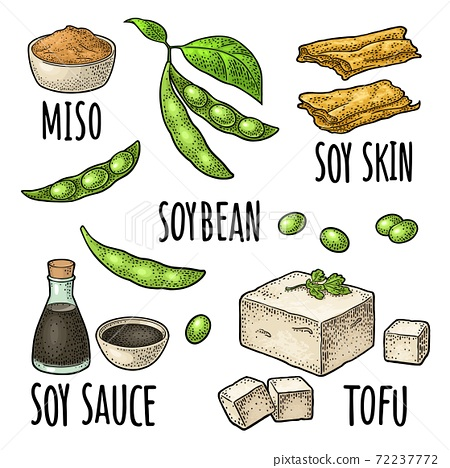 Soy food set. Miso, tofu skin, soybean, sauce 72237772
