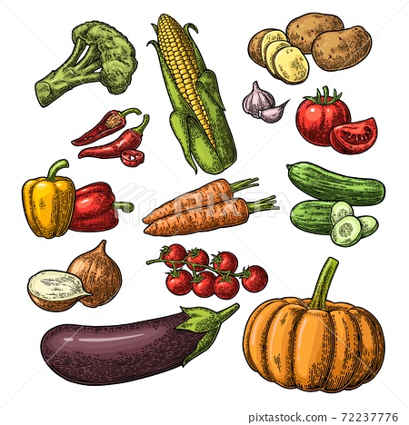 Set vegetables. Cucumbers, Garlic, Corn, Pepper, Broccoli, Potato and Tomato. 72237776