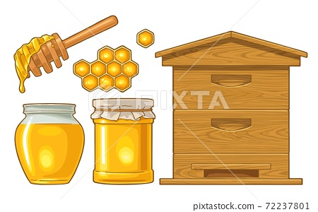 Honey set. Jars, hive and honeycomb. Vector color illustration. 72237801