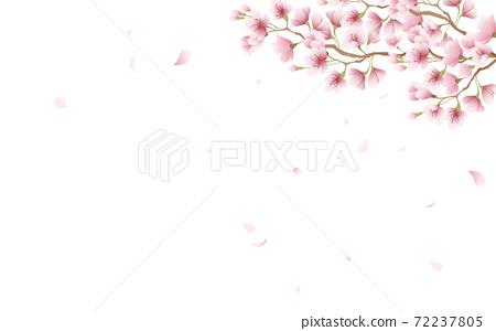 벚꽃 꽃잎 꽃 핑크 하늘 배경 소재 일러스트 72237805
