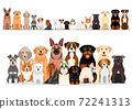 狗一排組前排 72241313