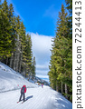 Skier on a Narrow Ski Slope Among Tall Spruce Trees 72244413