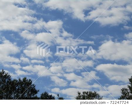 이나 게 해변 공원의 겨울의 푸른 하늘과 흰 구름 72247724