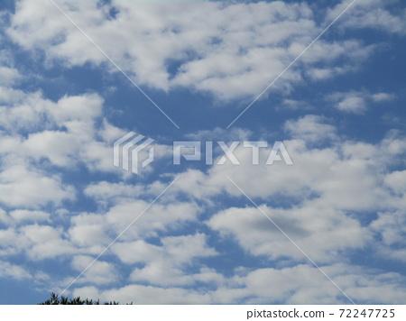 이나 게 해변 공원의 겨울의 푸른 하늘과 흰 구름 72247725