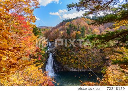가을 法体の滝 72248129