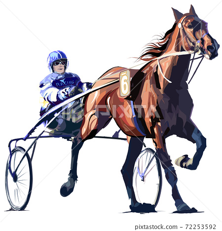Horse racing  in sulky 72253592