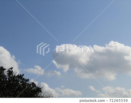 検見川 바닷가 가을의 푸른 하늘과 흰 구름 72265539