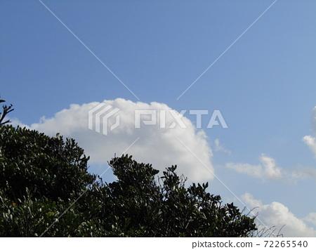 検見川 바닷가 가을의 푸른 하늘과 흰 구름 72265540