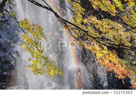 彩虹,瀑布和秋天的落葉 72275307