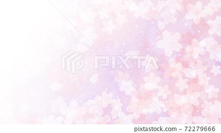 Cherry blossom background illustration petal cherry spring illustration material 72279666
