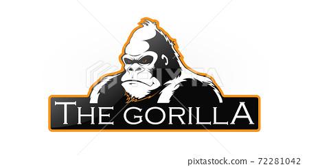 Gorilla 72281042