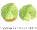 白菜的插圖 72284319