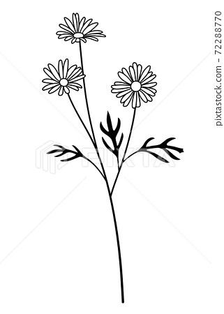 꽃의 일러스트 마가렛 72288770