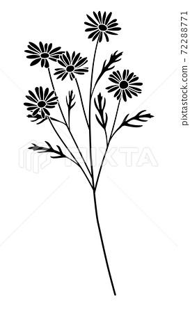 꽃의 일러스트 마가렛의 실루엣 72288771