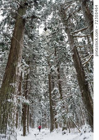 長野縣飯山市冬季發電點小須賀神社 72308464