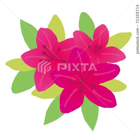深粉紅色的tsutsuji的插圖 72309714