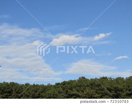 稲毛海岸 겨울 푸른 하늘과 흰 구름 72310783