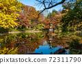 히 비야 공원 구름 연못 단풍 72311790