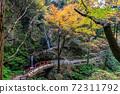 黒山三滝 단풍 72311792