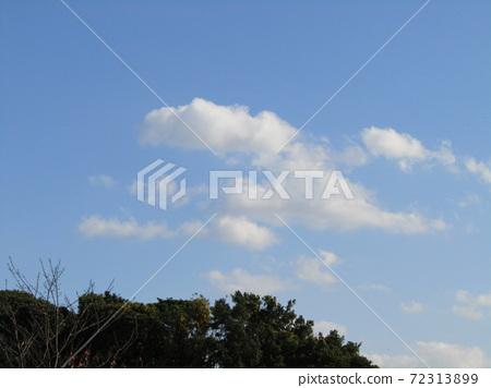 이나 게 해변 공원의 겨울의 푸른 하늘과 흰 구름 72313899