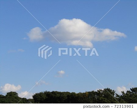이나 게 해변 공원의 겨울의 푸른 하늘과 흰 구름 72313901