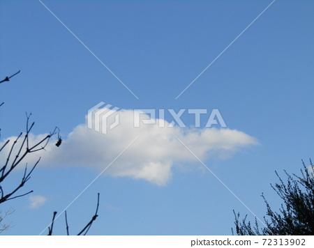 이나 게 해변 공원의 겨울의 푸른 하늘과 흰 구름 72313902