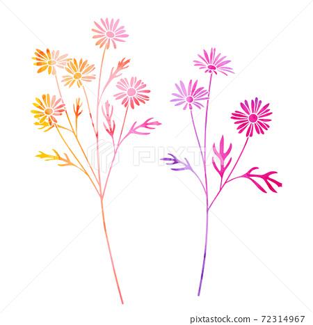 꽃의 수채화 일러스트 세트 (마가렛) 72314967