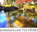 pond 72318588