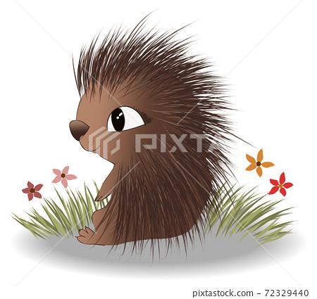 Happy hedgehog sitting on grass and flowers and enjoying the view 72329440