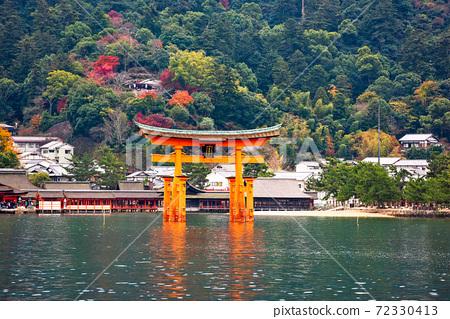 Miyajima, Hiroshima, Japan 72330413