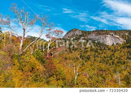 Grandfather Mountain, North Carolina, USA. 72330420