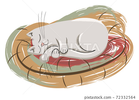 Composition of a cat sleeping and hugging his tail in his bed 72332564