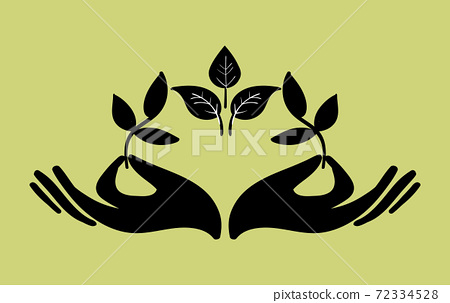 Composition of two hands holding twigs with leaves 72334528