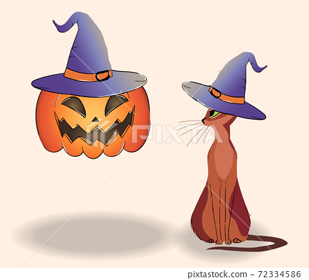 Composition of a cat and a floating jack-o-lantern in hats 72334586