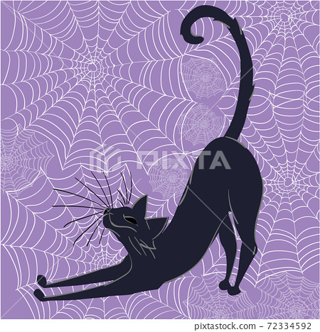 Black cat happily stretching with spider webs in background. Halloween themed composition 72334592