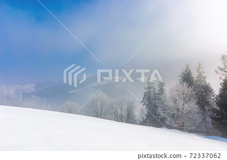 trees in mist on a snow covered hill. fairy tale winter mountain scenery. frosty weather on a sunny morning 72337062