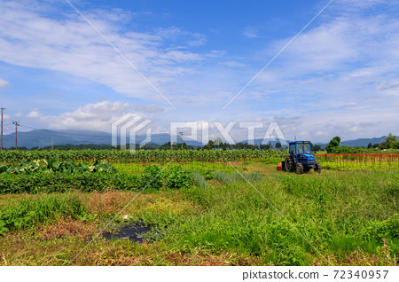 田間拖拉機夏季農業圖像沒有人 72340957